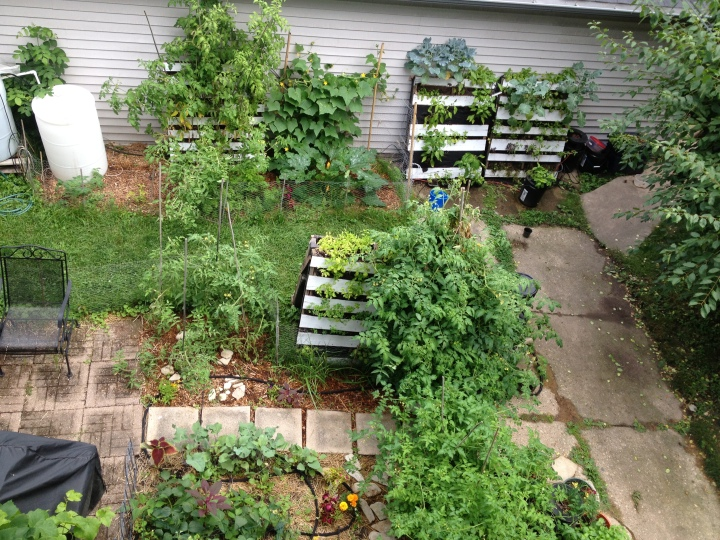 Garden part 4-24