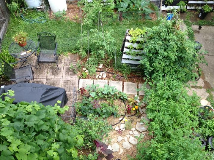 Garden part 4-25