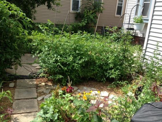 garden part 4-9