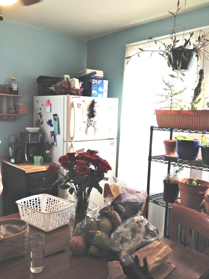 blue kitchen 4